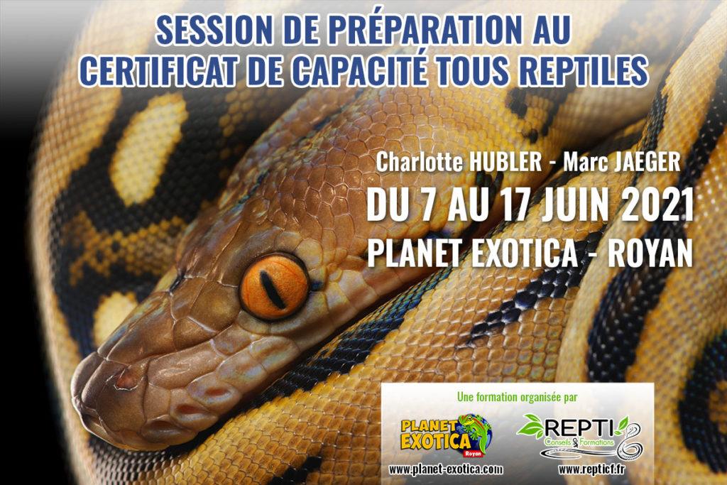 Planet_exotica-tous_reptiles-2021-v – Repti Conseils ...